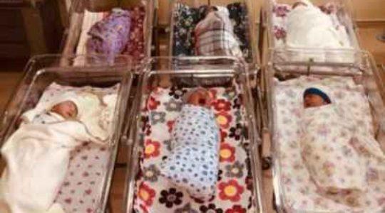 კახეთში 6 ტყუპი დაიბადა