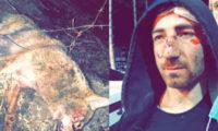 წალკაში მამაკაცი მგელს შიშველი ხელებით გაუმკლავდა და ქალები გადაარჩინა