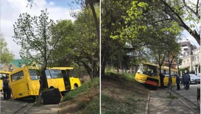 თბილისში მგზავრებით სავსე ავტობუსი ხეს შეეჯახა