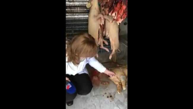 """დამპალი ხორცი, გაურკვეველი ცხოველის ნარჩენები, აყროლებული წიწილები - ,,სახალხო კონტროლის"""" ლაივ-ჩართვა პრესტიჟული რესტორნიდან - ვიდეო"""