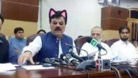 """,,ერთი ემზარ კვიციანი ყველას ჰყავს"""" - პაკისტანში მთავრობის სხდომაზე ლაივი კატის ფილტრით ჩართეს"""