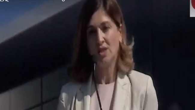 განათლების მინისტრის მოადგილე ბანერის თავში დაცემას გადაურჩა - ვიდეო