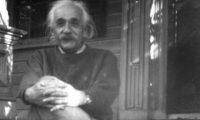 """აინშტაინი: ,,კრიზისი ნამდვილი კურთხევაა ადამიანისთვის, ერისთვის, ამ დროს იბადება დიდი სტრატეგიები, გამოგონებები…"""""""